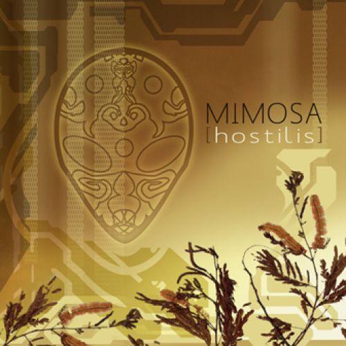 how to grow mimosa hostilis